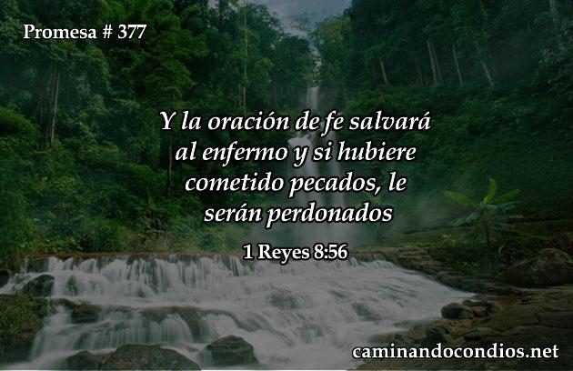 promesa377