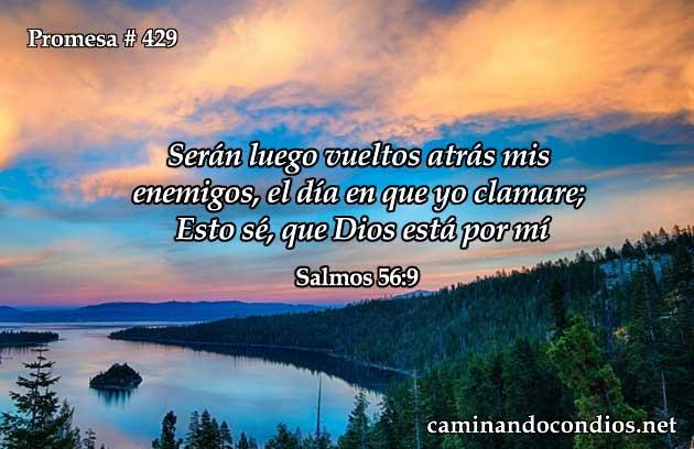 Salmos 56:9