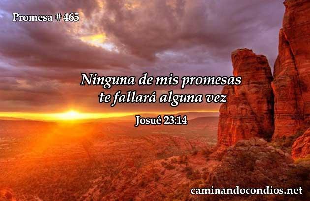 Josué 23:14
