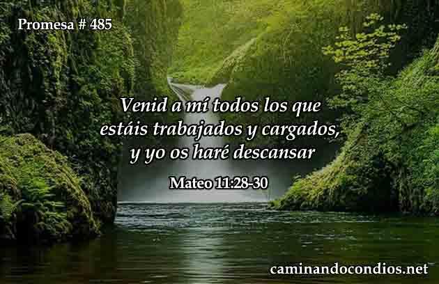 Mateo 11:28-30