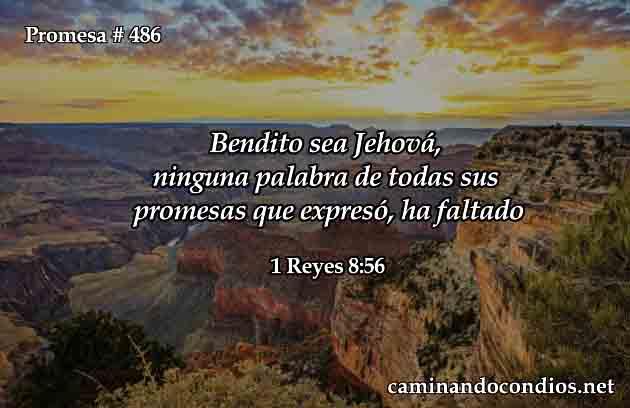1 Reyes 8:56