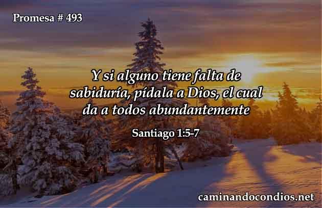 Sabiduría de Dios