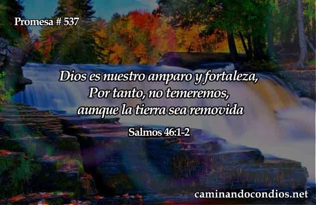 Dios es nuestro amparo y fortaleza