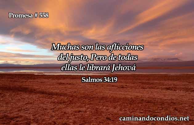 Salmos 34:19