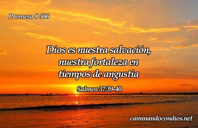 Dios es nuestra salvación