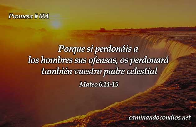 Versículos de perdón