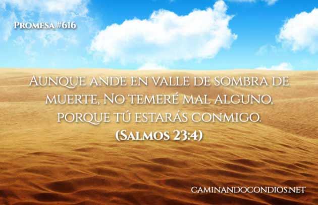 versículos de coraje