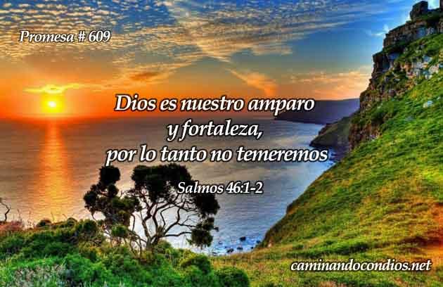 Versículos de Fortaleza en Dios