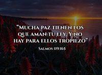 Frases de Dios sobre su paz