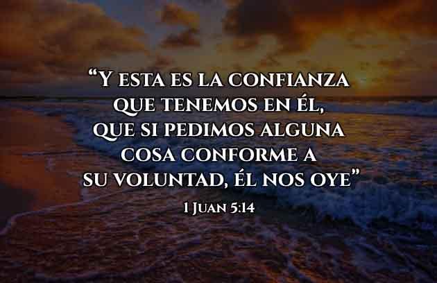 versículos de amor de Dios y su voluntad