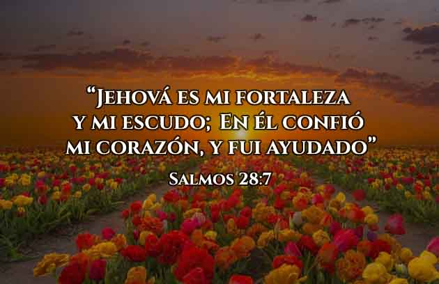 Versículos de Fortaleza
