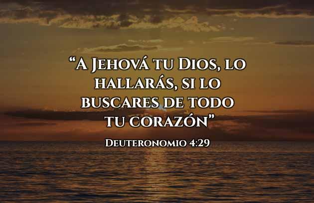 Frases Cristianas sobre buscar de Dios