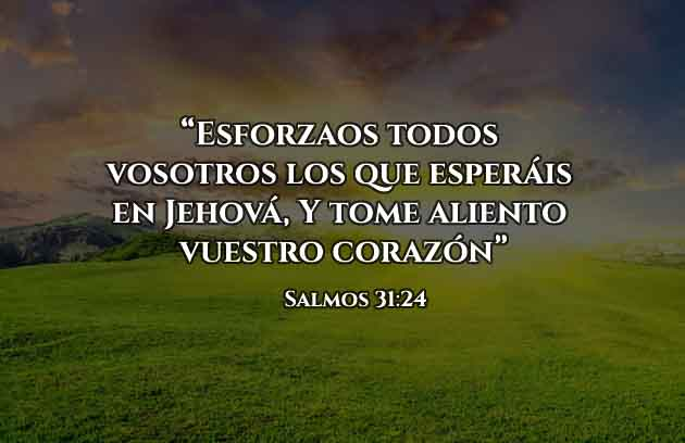 Frases Cristianas Salmos 31 24