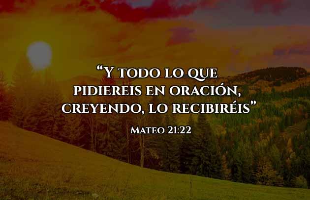 Frases Cristianas, con fe recibirás