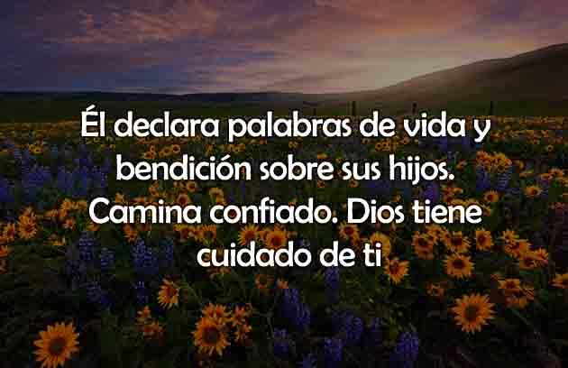 Versículo del día declara bendición