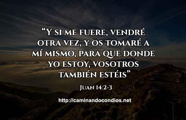 versiculo-del-dia-Juan1423