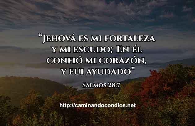 versiculo-del-dia-Salmos287
