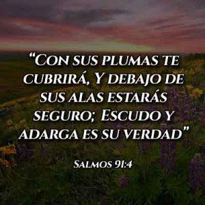 Versículo del Salmo 91:4