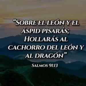 Versículo del Salmo 91:13