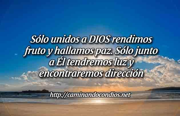 Salmos 91 Bajo El Ala de Dios