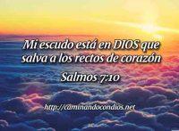 SALMOS-7-10-MI-ESCUDO-ES-EN-DIOS