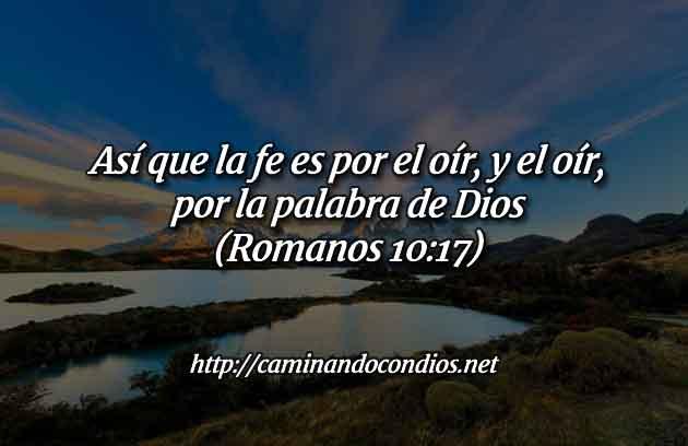 fe-en-su-palabra-salmo-23