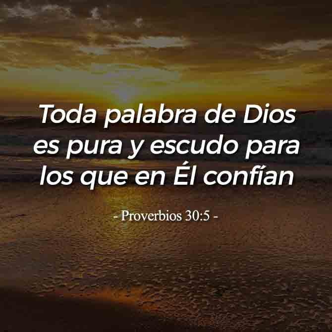 proverbios-30-5