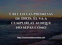 confia-en-sus-promesas