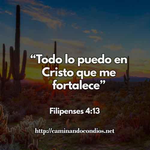 Todo lo puedo en Cristo que me fortalece. (Filipenses 4:13)