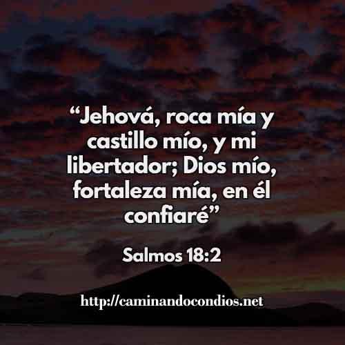 SALMOS-18-2