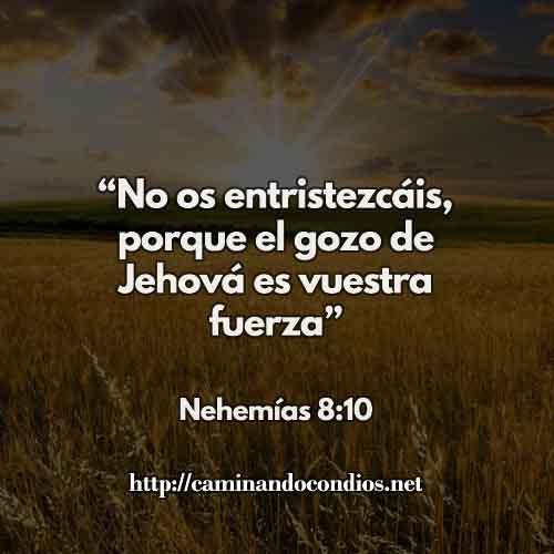CCC-NEHEMIAS-8-10