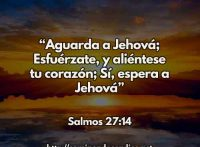 SALMOS-27-14