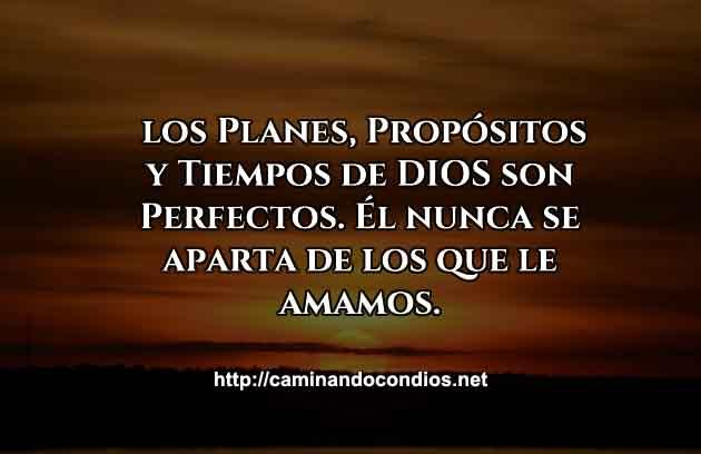 PROPOSITOS-PERFECTOS