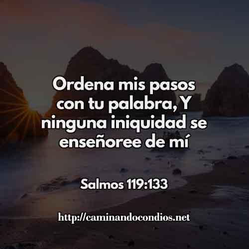 SALMOS-119-133-CCCC