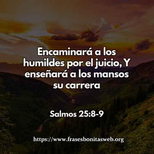 salmos-25-8-9-dev