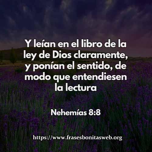 nehemias-8-8-dev