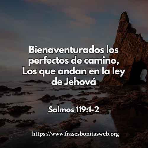 salmos-11-CCDIOS