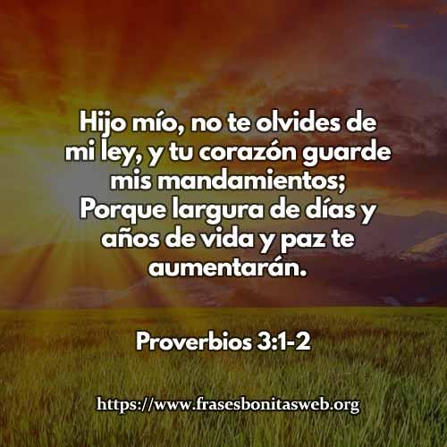 proverbios-3-1-2-dev