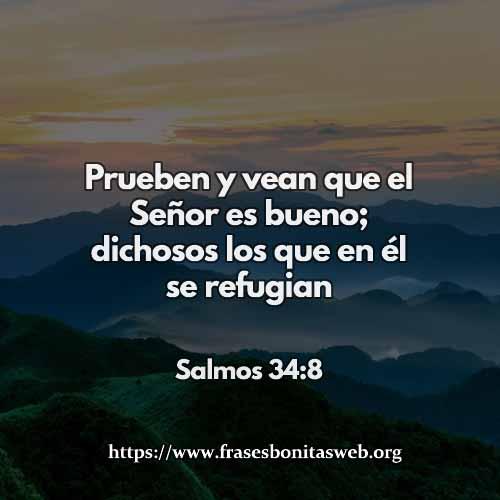 salmos-34-8-dev-nuevo