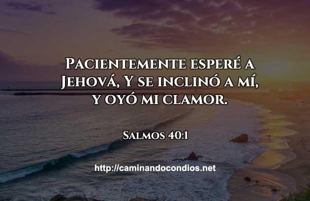 salmos-40-1-dev