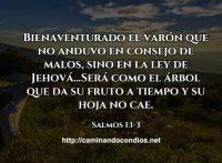 salmos-1-1-3
