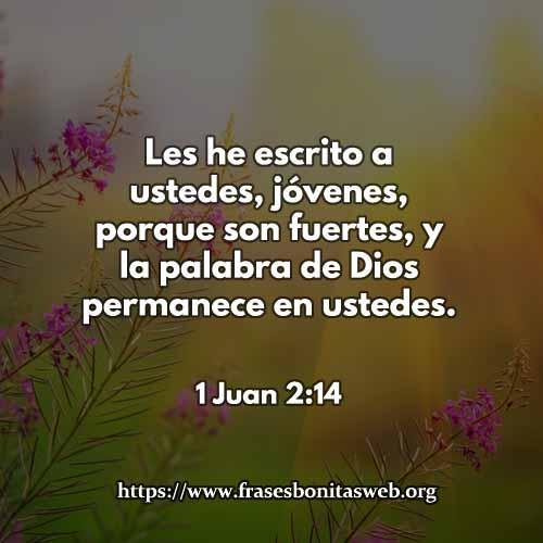 1-Juan-2-14