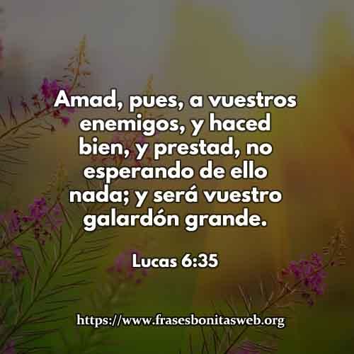 lucas6-35-dev