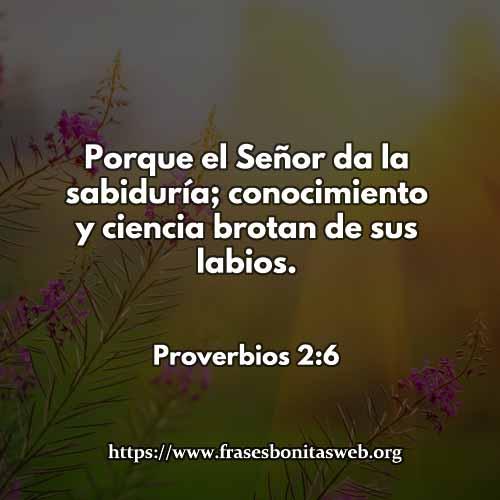 proverbios-2-6-dev