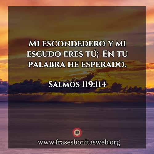 salmos-119-114