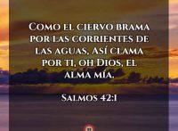 salmos-42-1-dev