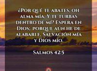 salmos-42-5-dev
