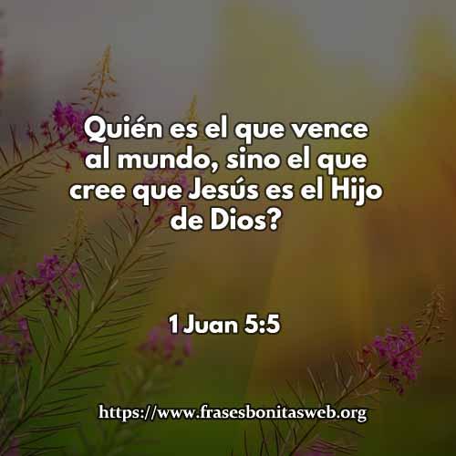 1-Juan-5-5CCDIOS