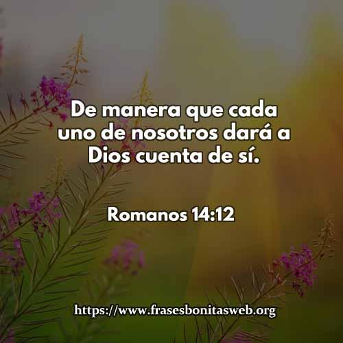 Romanos-14-12-CCDIOS