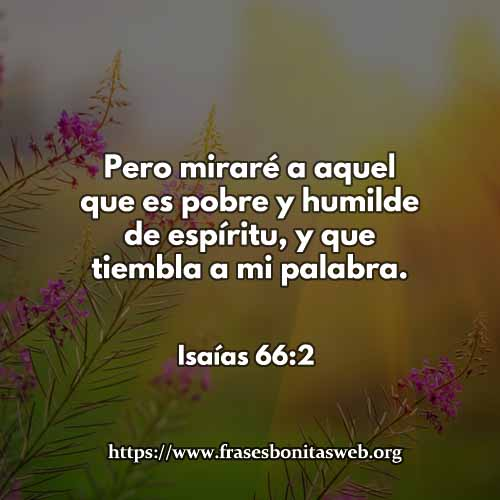 isaias696-2